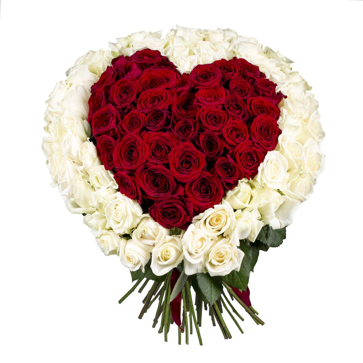 101 Kalp şeklinde Güller
