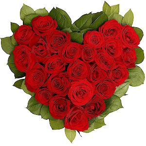 33 Kalp Seklinde Kırmızı Gül