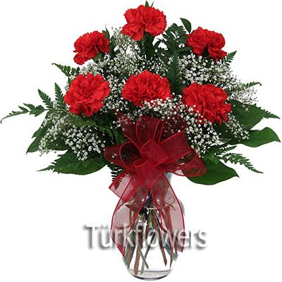 6 Adet kırmızı karanfilden oluşan çiçek modeli