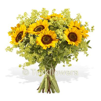 Günebakan Çiçeği buketi