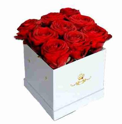 Kutuda 9 Kırmızı Gül Doha
