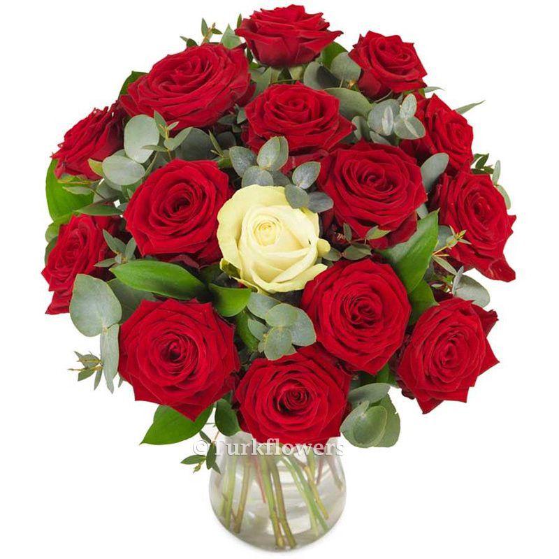 Kırmızı Güller ve 1 Beyaz Gül