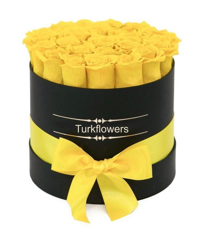 Kutuda sarı Güller 19-25