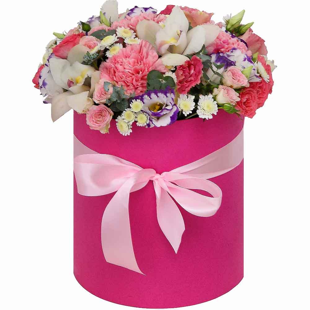 Kutuda Orkide ve Çiçekler