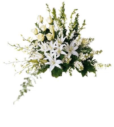 Beyaz çiçekleden oluşan özel aranjman