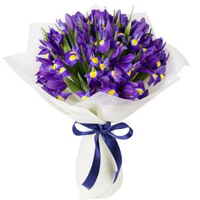 15 Mor irislerden oluşan buket
