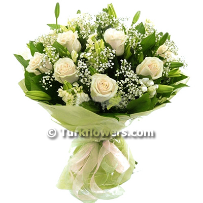 Beyaz Güller ve Şebboylar