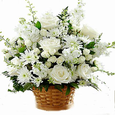 Cenaze & Taziye Çiçeği