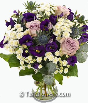 Mor Lusyentus Papatya ve lila güller