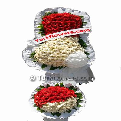 Düğün Çiçeği , İkilili , kırmızı beyaz çiçeklerden oluşmaktadır.