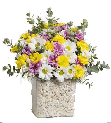 Renkli Kır Çiçeği Aranjmanı
