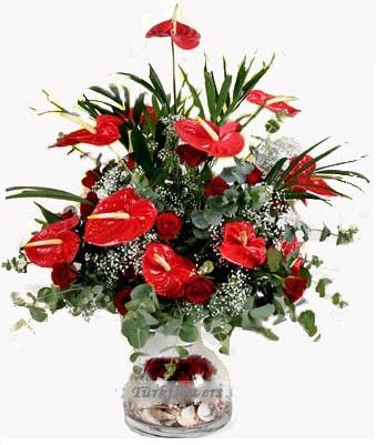 Cam vazo içerisinde 13 Adet kırmızı antoryum ve 13 adet kırmızı gülden oluşan aranjman