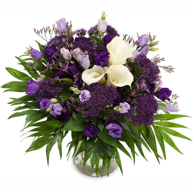Lusyentuslar ve Mor çiçekler