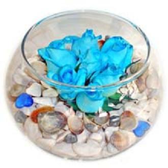 Cam fanus içerisinde 7 adet mavi gül
