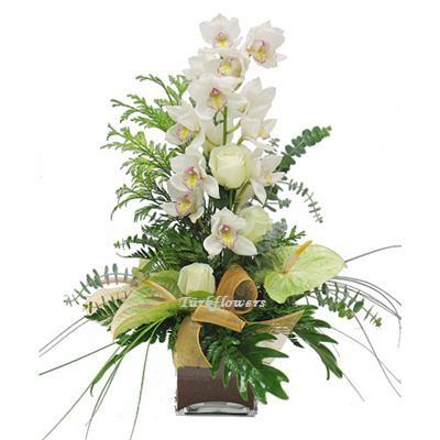 Cam vazoda 1 dal orkide