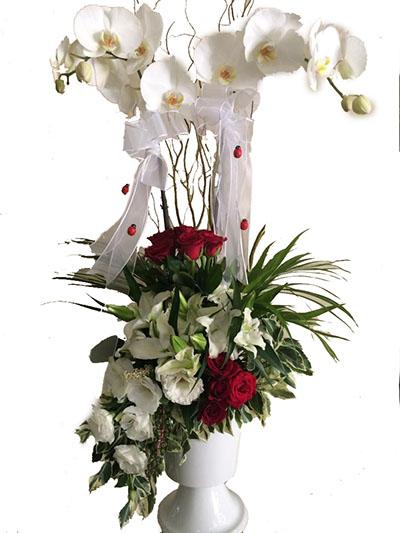 Özel Aranjman Lilyum ve orkide aranjman