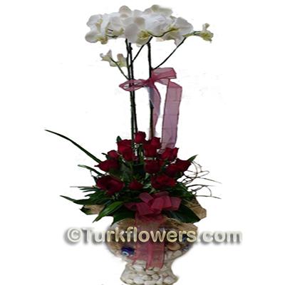 Çift dal orkide ve 15 kırmızı gülden oluşan Söz Nişan Çiçeği