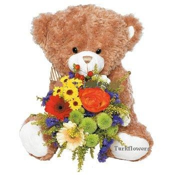 Ayıcık Kucağında Kır çiçekleri