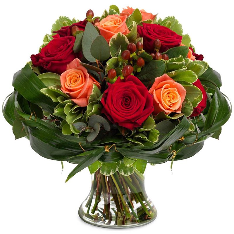 Kırmızı ve Turuncu Güller