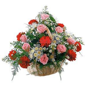 pembe güller ve karanfiller