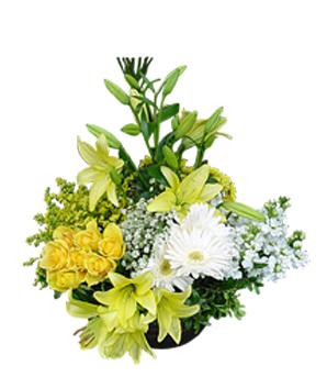 Sarı lilyum ve sarı güllerden oluşan aranjman