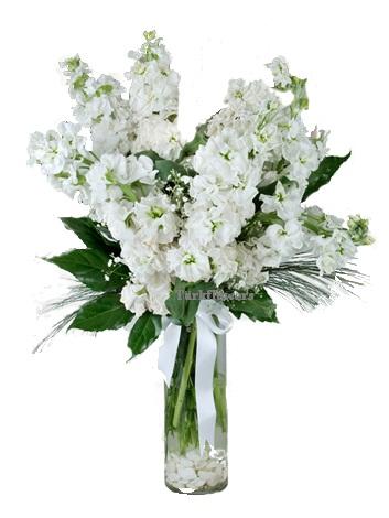 Cam Vazo içerisinde 6 adet beyaz renkli kokulu şebboylar